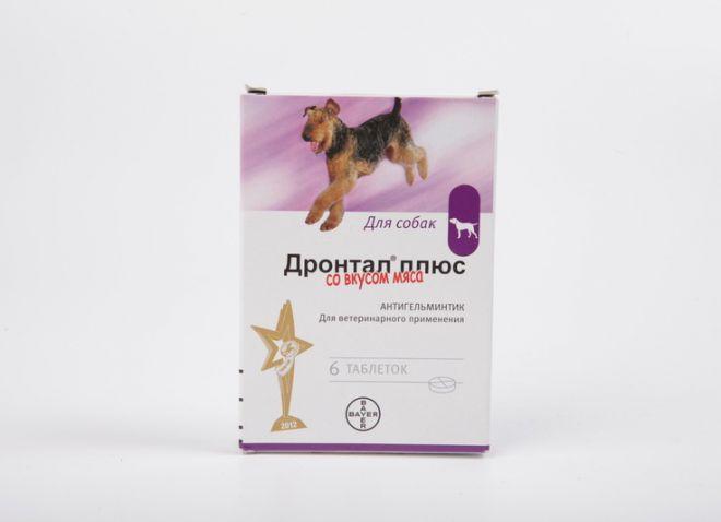 Глисты у собаки лечение