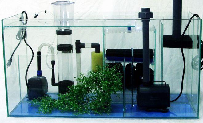 оборудование для запуска аквариума