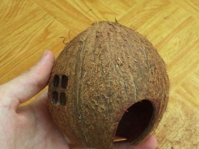 Как сделать кокос из бумаги своими руками