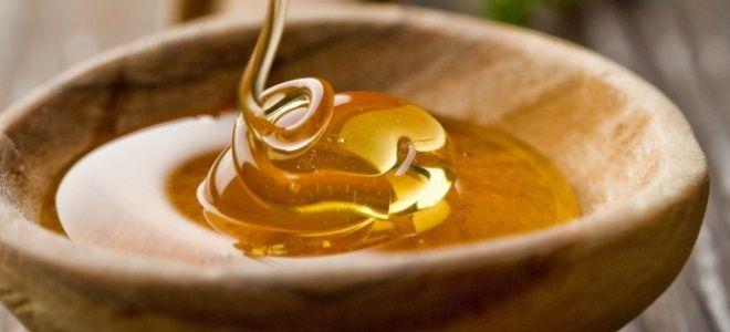 Мёд при геморрое при беременности
