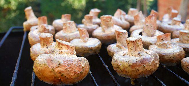 шампиньоны на мангале рецепт маринада со сливками