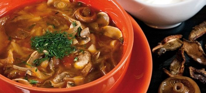 суп солянка с грибами