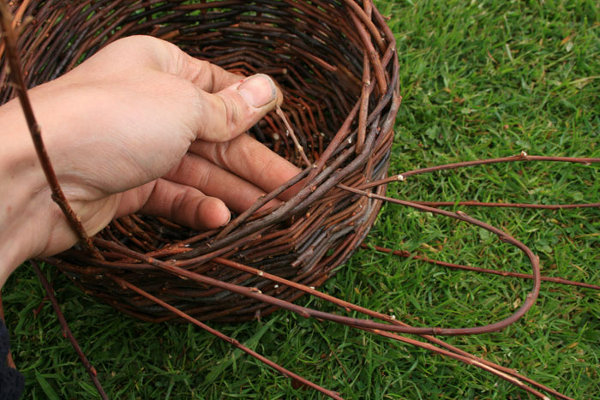 Видео урок по плетению из ивы