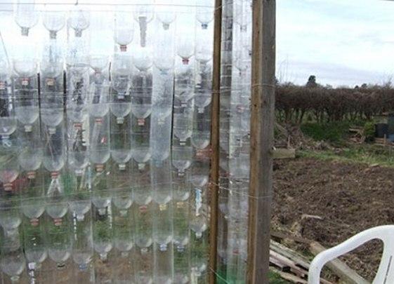 Как из пластиковой бутылки сделать теплицу 249