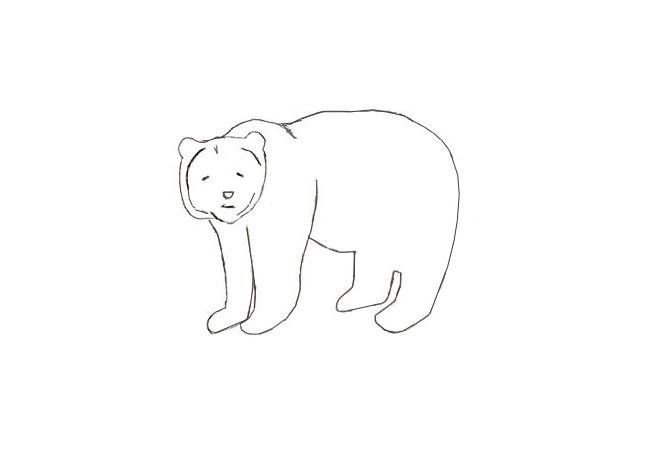как нарисовать медведя поэтапно карандашом для начинающих