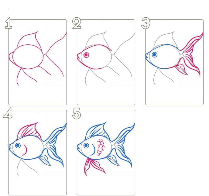 Поэтапно карандашом нарисовать рыбу