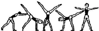 Гимнастика как сделать колесо