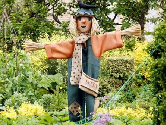 Пугало своими руками в саду
