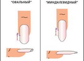Контрольная как добиться идеальных ногтей при наращивании легко подобрать список