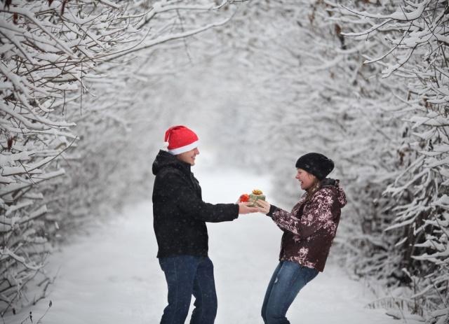 Как сделать предложение зимой 301