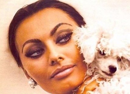 Красивые русские девушки мира фото