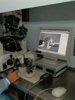 Что такое ЭКО в гинекологии?