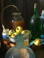 Домашнее яблочное вино – рецепт