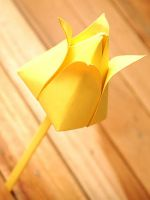 Как сделать тюльпан из бумаги?