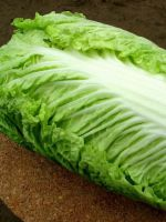 Пекинская капуста - выращивание и уход