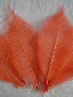 Поделки из скелетированных листьев