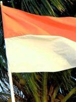 Виза в Индонезию для россиян