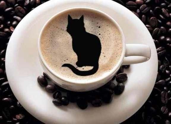 Кот на кофейной гуще значение
