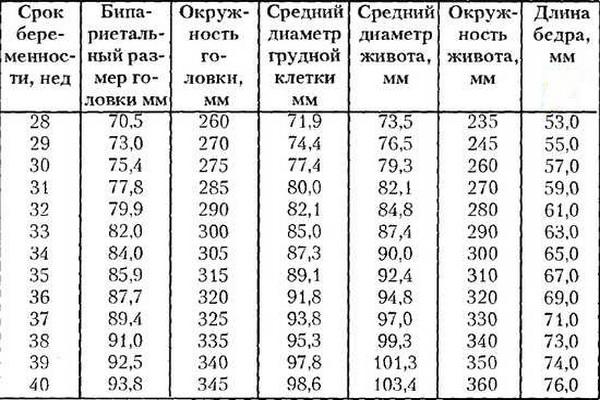 Окружность головы по месяцам таблица беременности