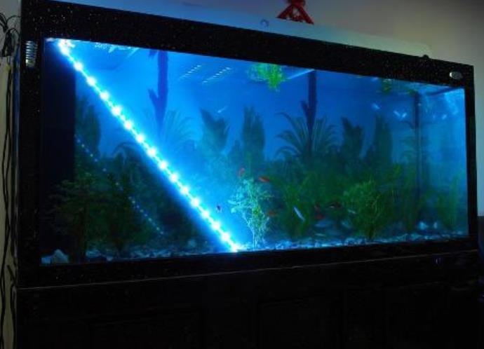 Освещения аквариума фото