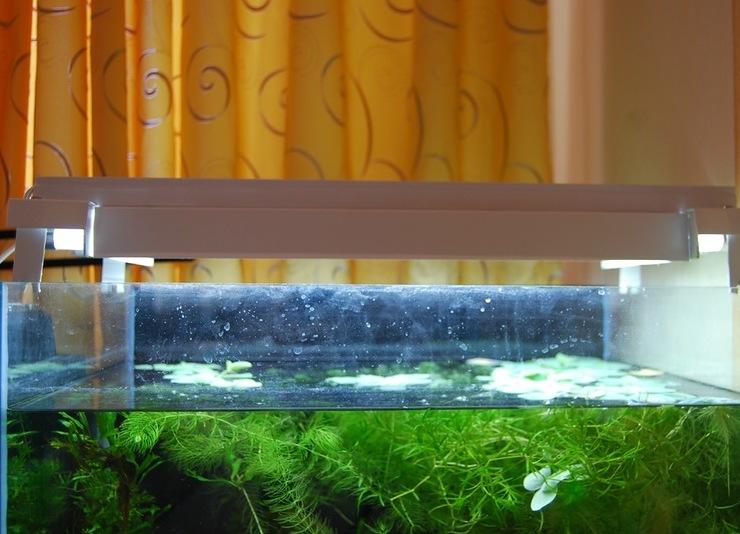 Освещение для аквариума своими рука 196