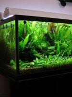 Освещение аквариума своими руками