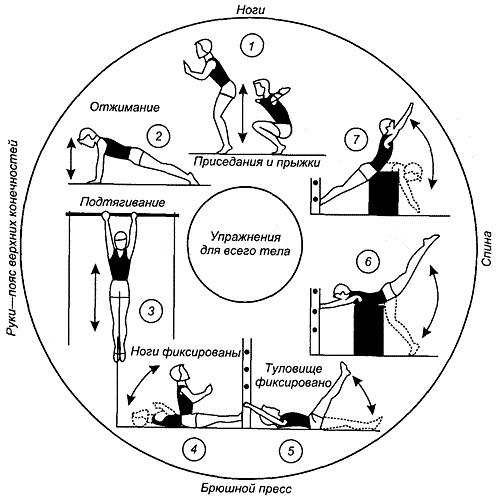 тренировки для сжигания подкожного жира