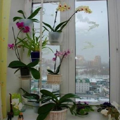 Стойки для цветов на подоконник