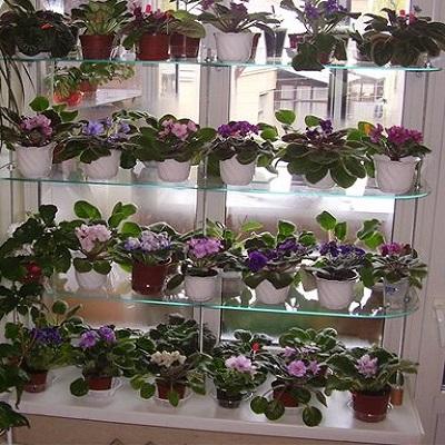 Что необходимо для продажи цветов