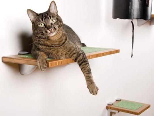 Домики на стену для кошек своими руками