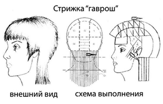 Фото стрижки и ее схема
