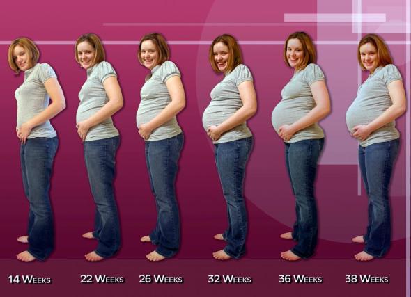 Сколько ребенок весит в 38 недель беременности