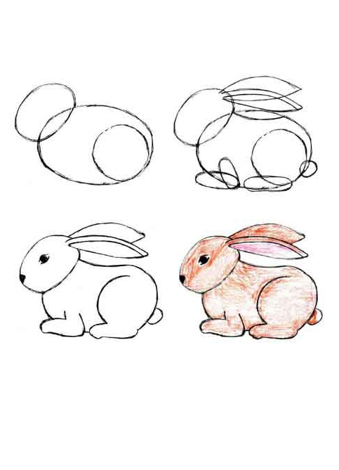 фото зайца для детей