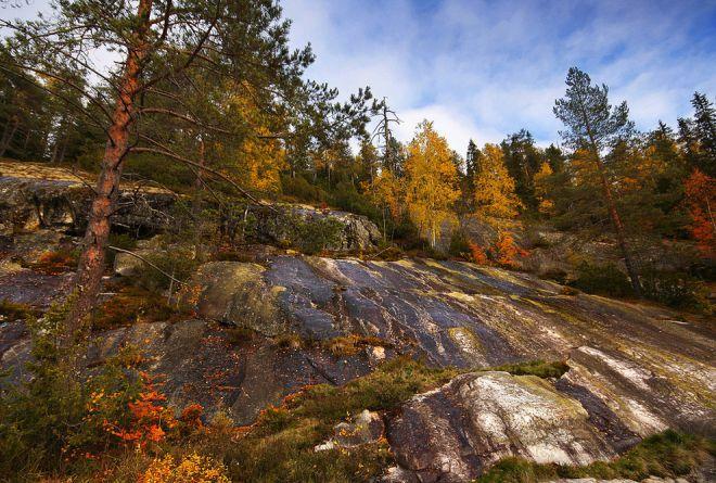 Живописные виды национального парка