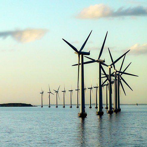 Датчане заботятся об окружающей среде 1