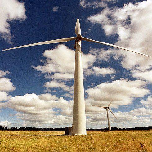Датчане заботятся об окружающей среде 2