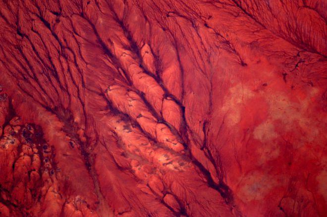 Сомалийская пустыня