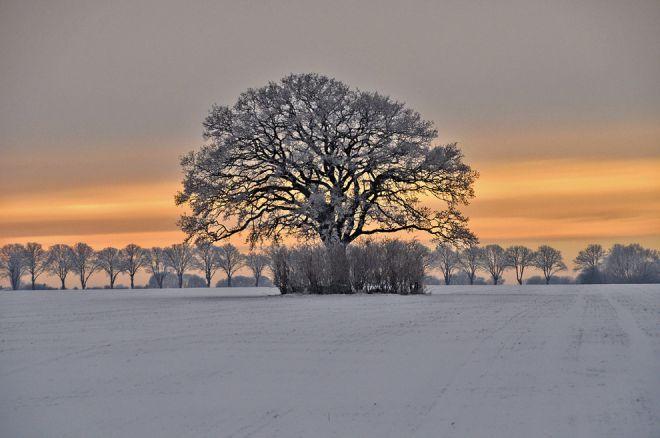 Зима в Дании завораживает