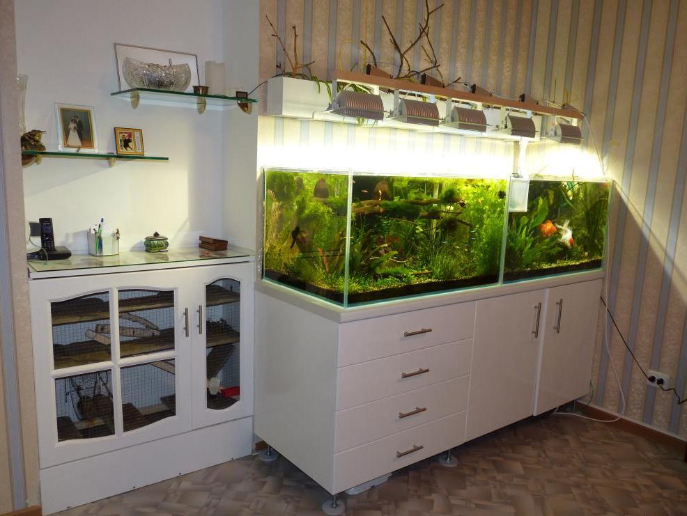 полки под аквариум фото плавно переходят