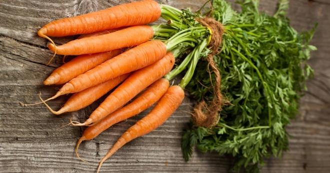 Всё о выращивание моркови