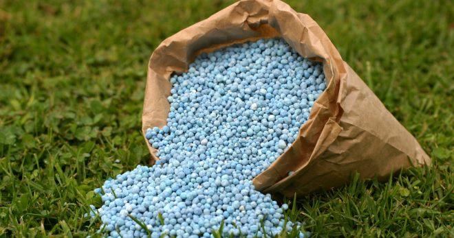 Калийные удобрения - значения для растений, особенности применения на огороде