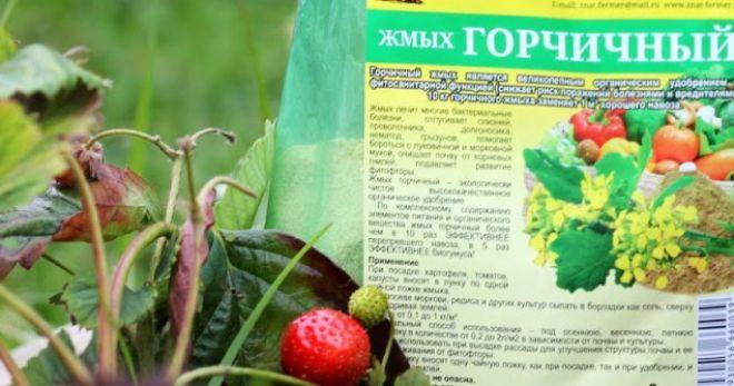 Горчичный жмых. Применение в огороде горчичного жмыха: инструкция, отзывы. Горчичный жмых как удобрение