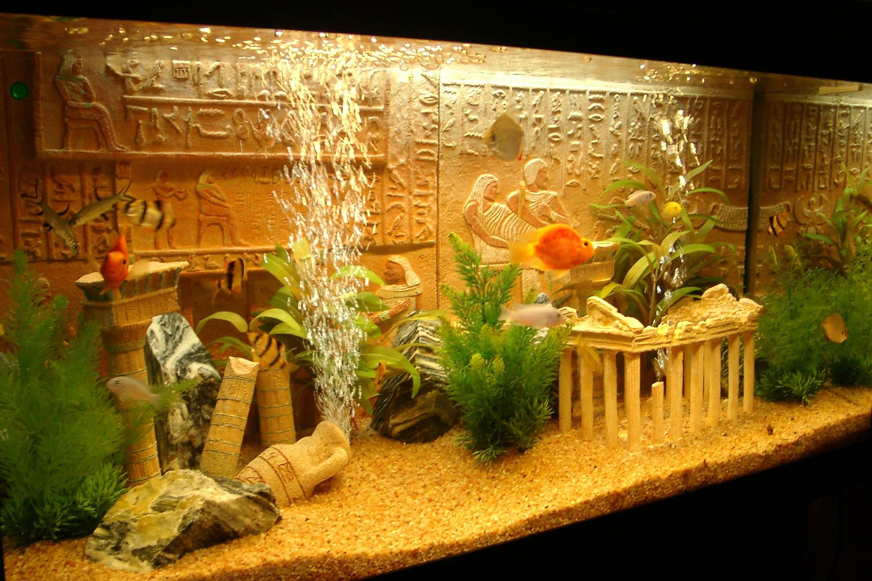 система картинки декорации в аквариум как нашему сегодняшнему