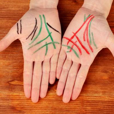 Линии на ладони Значение на правой руке что означают линии на ладони левой руки Расшифровка по хиромантии