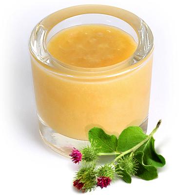 Мед расторопша полезные свойства и вред