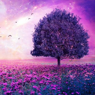 Фиолетовый цвет по фрейду
