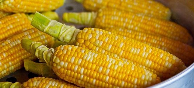 Вареная кукуруза на ночь