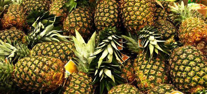 Чем полезен ананас для организма женщины