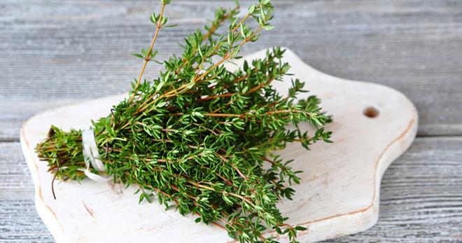 Польза и вред чая с чабрецом для организма человека, рецепты приготовления