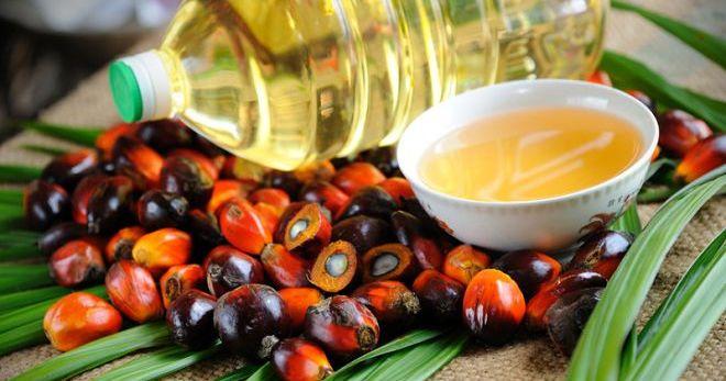 Пальмовое масло - вред для здоровья и фигуры